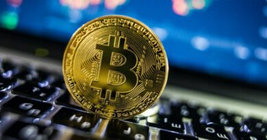 Selcoin Bitcoin Yorum Analiz 17 Eylül